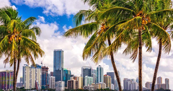 Miami Sports